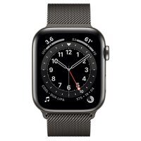 Apple Watch Series 6 GPS + Cellular 44mm Stainless Steel Case with Milanese Loop (графит)