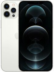 Apple iPhone 12 Pro Max 256GB Silver (серебристый) MGDD3RU/A
